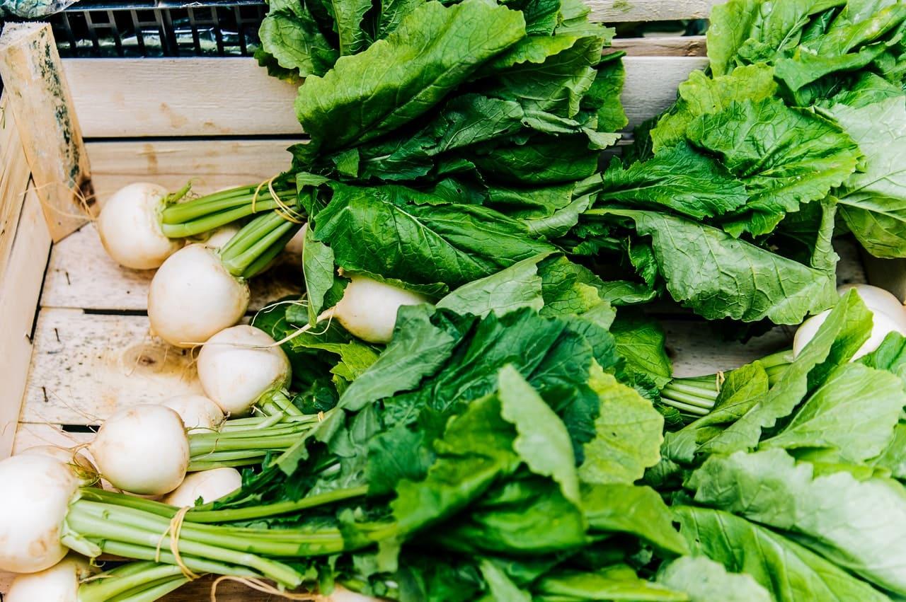 立秋要吃什麼:滋陰潤燥,首選能養肺的白色食物配圖