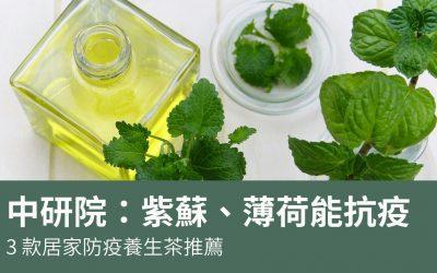 中研院證實:紫蘇、薄荷能抗疫!3 款居家防疫養生茶推薦